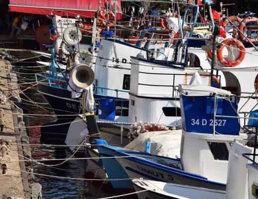 Wyprawa na ryby na wakacjach w Turcji